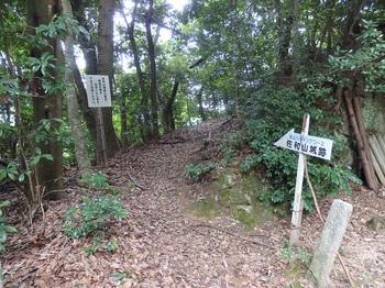 187奥之院宇賀神の山.JPG