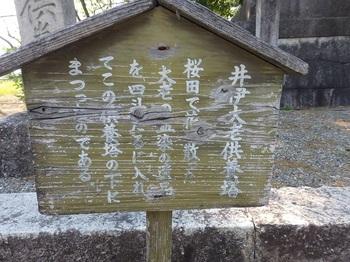天寧寺123.JPG