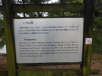 彦根城石垣いろは松293.JPG