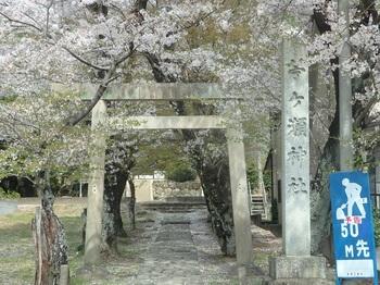 苧ヶ瀬池111.JPG