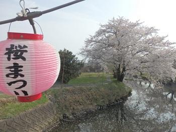 高田川堤防129.JPG