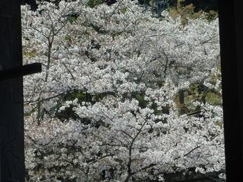 稲奈波神社004.JPG