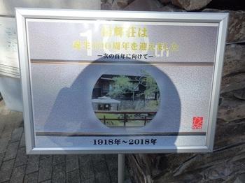 PA210057.JPG